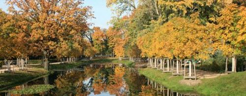 Le Tiergarten